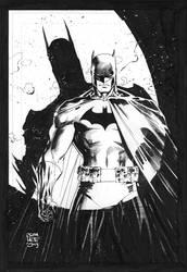 Spotlight on Batman by jimlee00