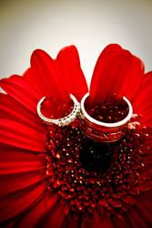 Rings by wzrdofozfan