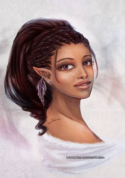 Elf with a winter feather