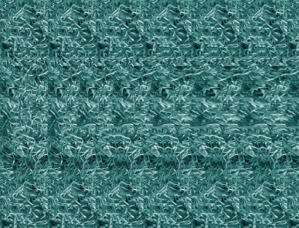 [Image: Stereogram_Test_by_slobo777.jpg]