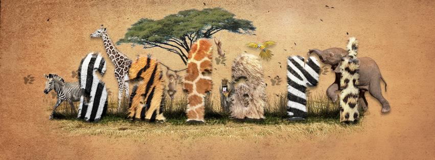 Safari by rigoszabi