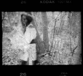 In the Woods No. 3 by sedge