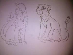 Lion,wolf