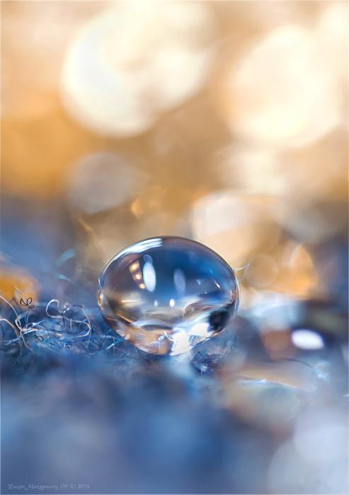 Blue Energy by DMMDesign