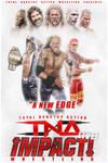 TNA Wrestling Fantasy Poster 1