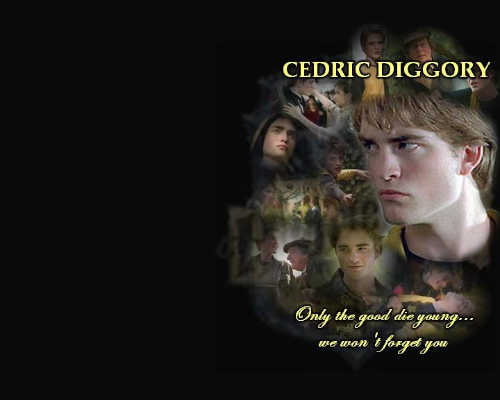cedric diggory  we wont forget by valdemar poe d150zpc