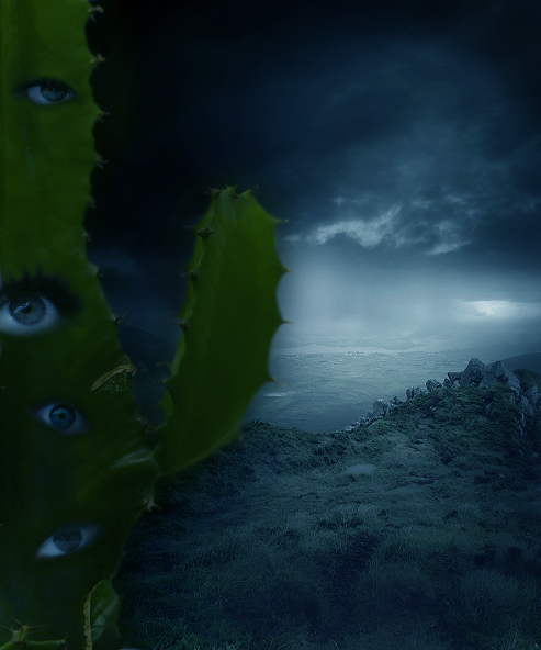 Ocular Cactus by EnuoCale