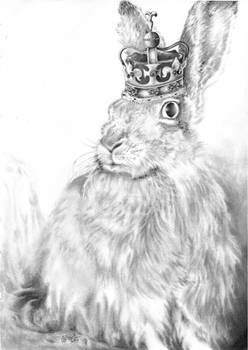 Queen Jack: Portrait of a House Hare