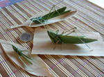 grasshoppers with palmleaves