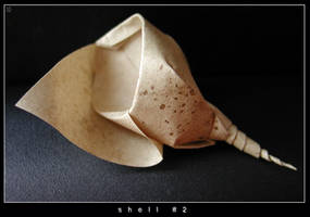 shell 2 by orsobrusco
