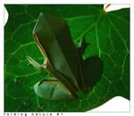 folding nature 1