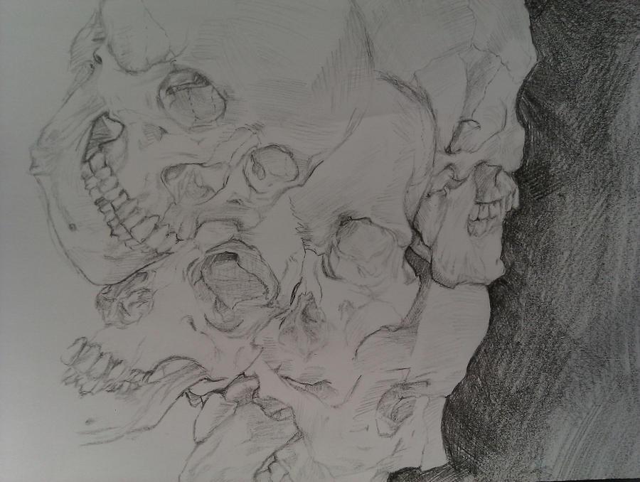 Skulls by Nimiea