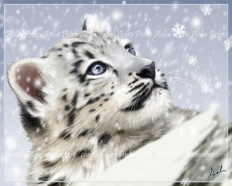 Snowflakes by Chaotica-I