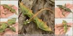Realistic Dragon Hatchling Rhaegal by Chaotica-I