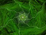 Green flover