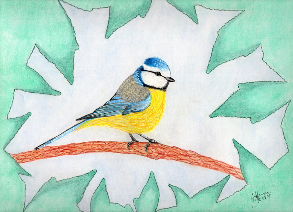 Eurasian blue tit by BlackEyesSnowAngel
