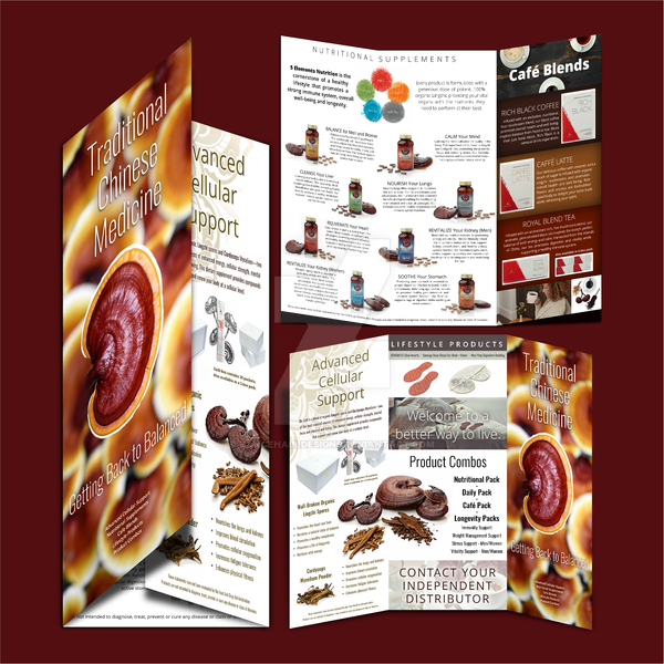 Tri-fold Brochure (dietary supplements) by DancehallDesigns