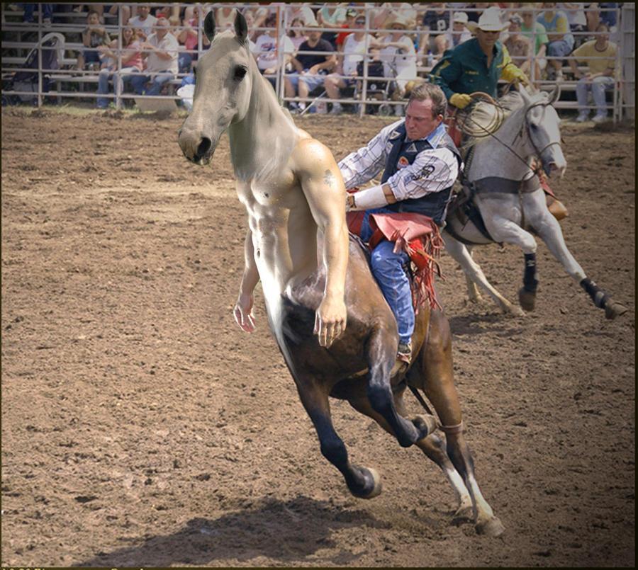 Rodeo by Boytaur