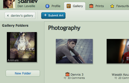 New Gallery Folders for Premium Members by danlev