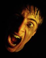 Screaming In Silence by danlev