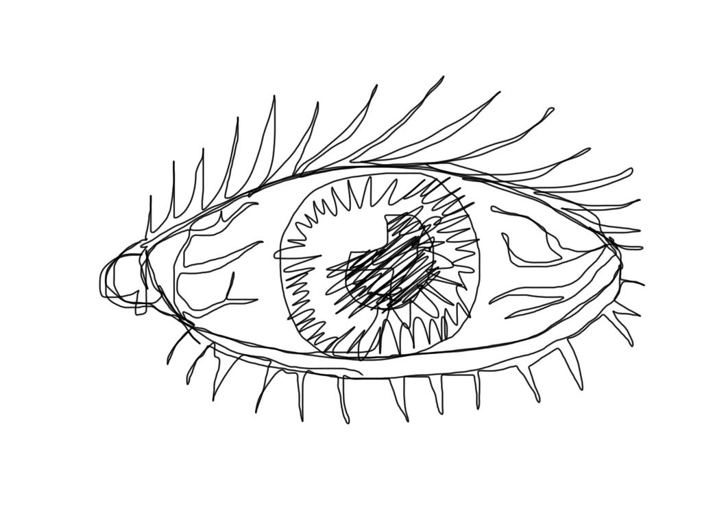 Line Art Eye : Continuous line challenge eyeball by danlev on deviantart