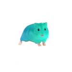 Turquoise hamster