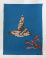 Hummingbird in Flight :blue: by strryeyedreamr27