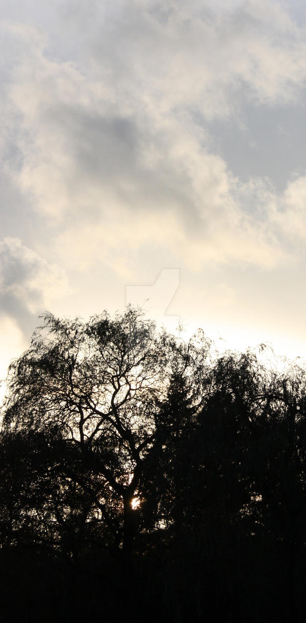 Autumn Sky Line by den-sai