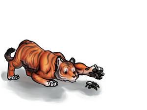 Curious Tiger Cub.