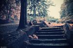 i dream of pink by lia-minou
