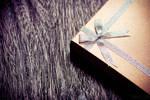 a present by lia-minou