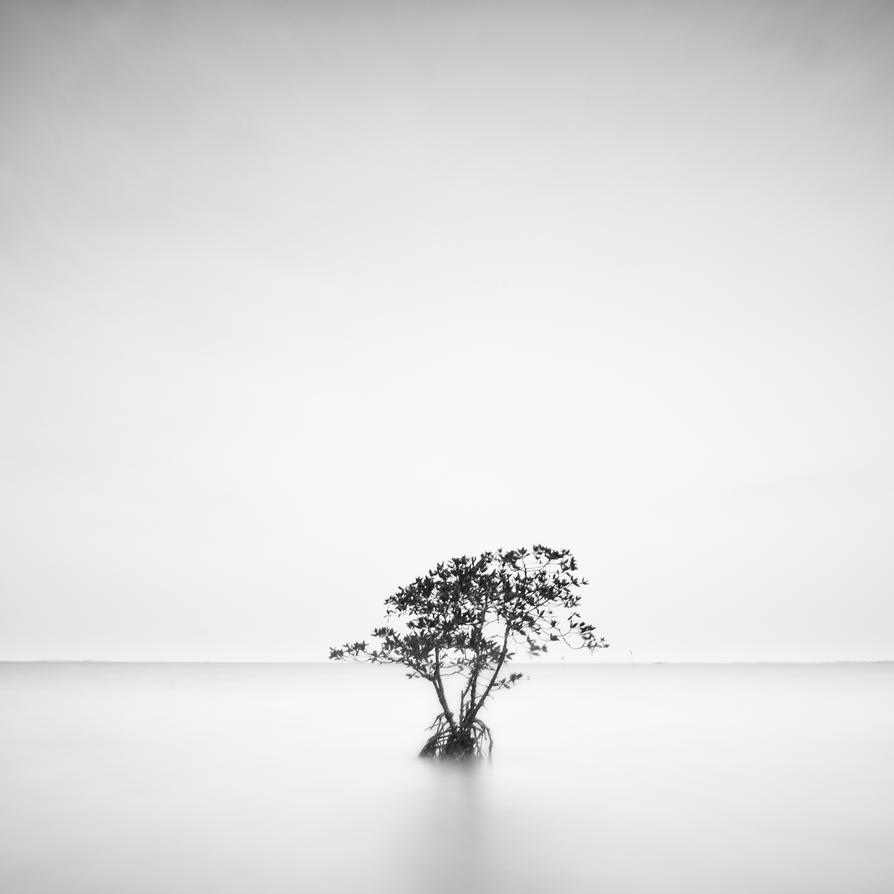 Solitude by salman2021