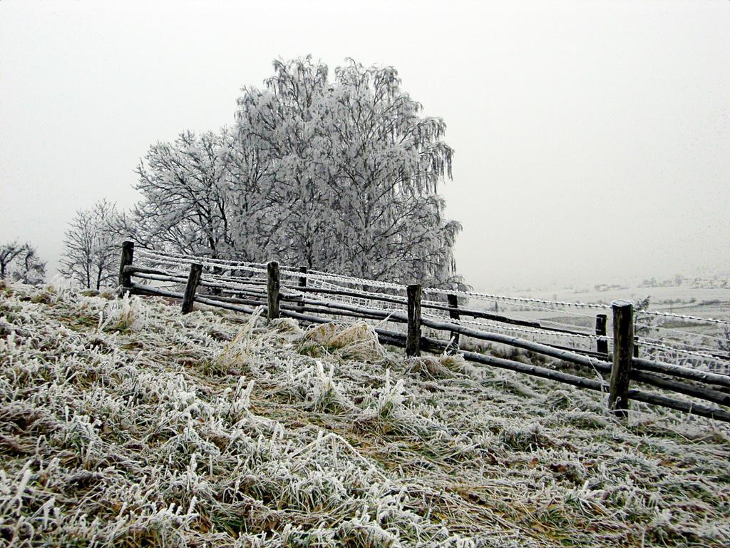 WinterImpressionBavaria by m0thman72