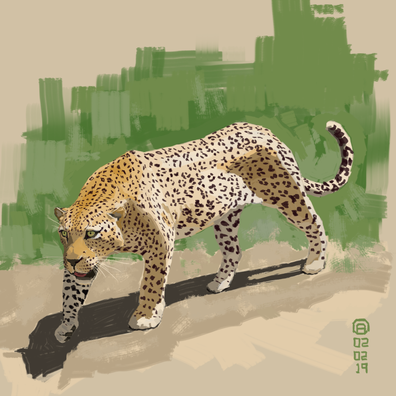 LeopardStudy2E by artloadernet