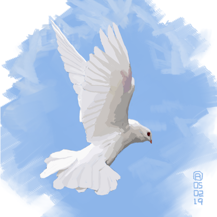 White Dove by artloadernet