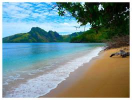 Fijian Dreamin by Ramio