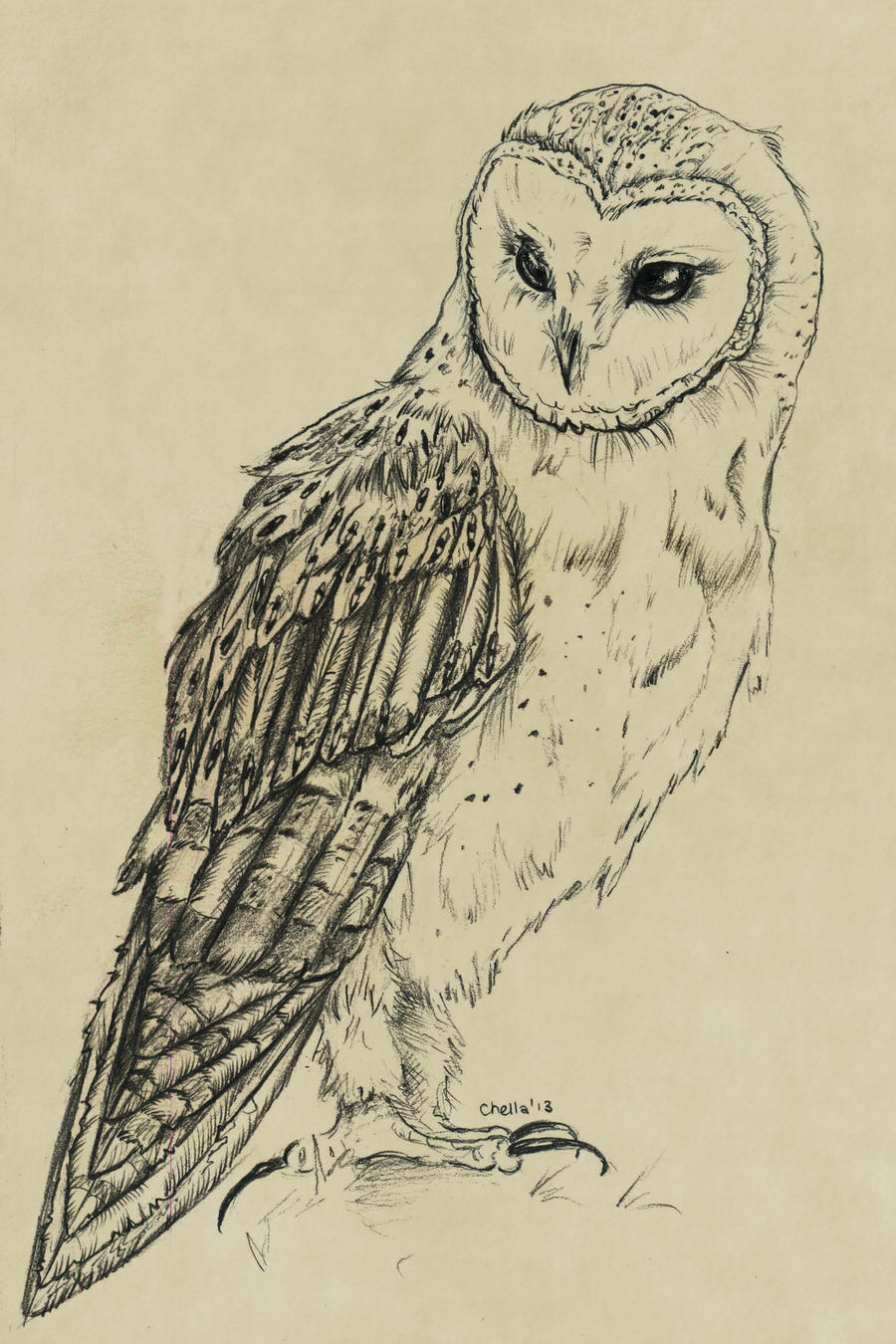 Snowy Owl Painting Related Keywords - Snowy Owl Painting ...