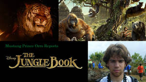 Mustang Prince Orro Reports The Jungle Book (2016)
