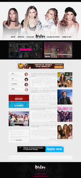 Little Mix - Wordpress Theme #02