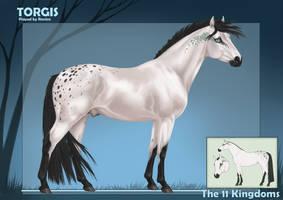 Torgis - Kingdom Ref by Ravica