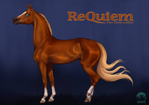 ReQuiem - Akhilo Stallion