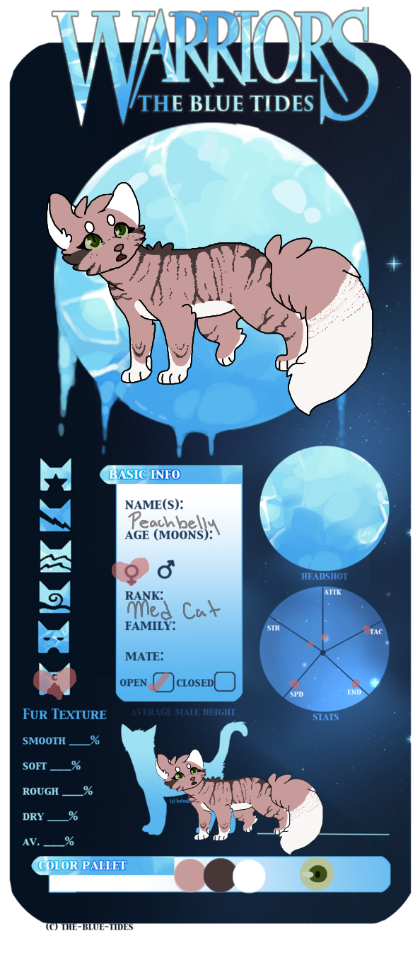 Peachbelly Medicine Cat Skyclan by SophSouffle