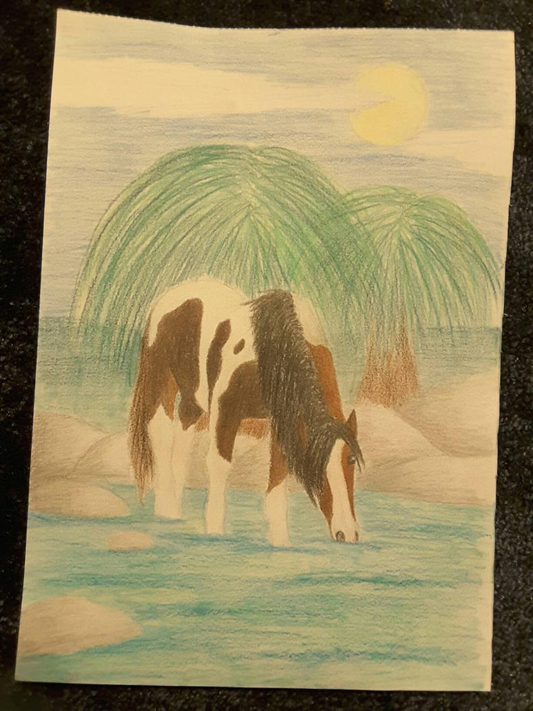 Horse drawing by Veronika200412