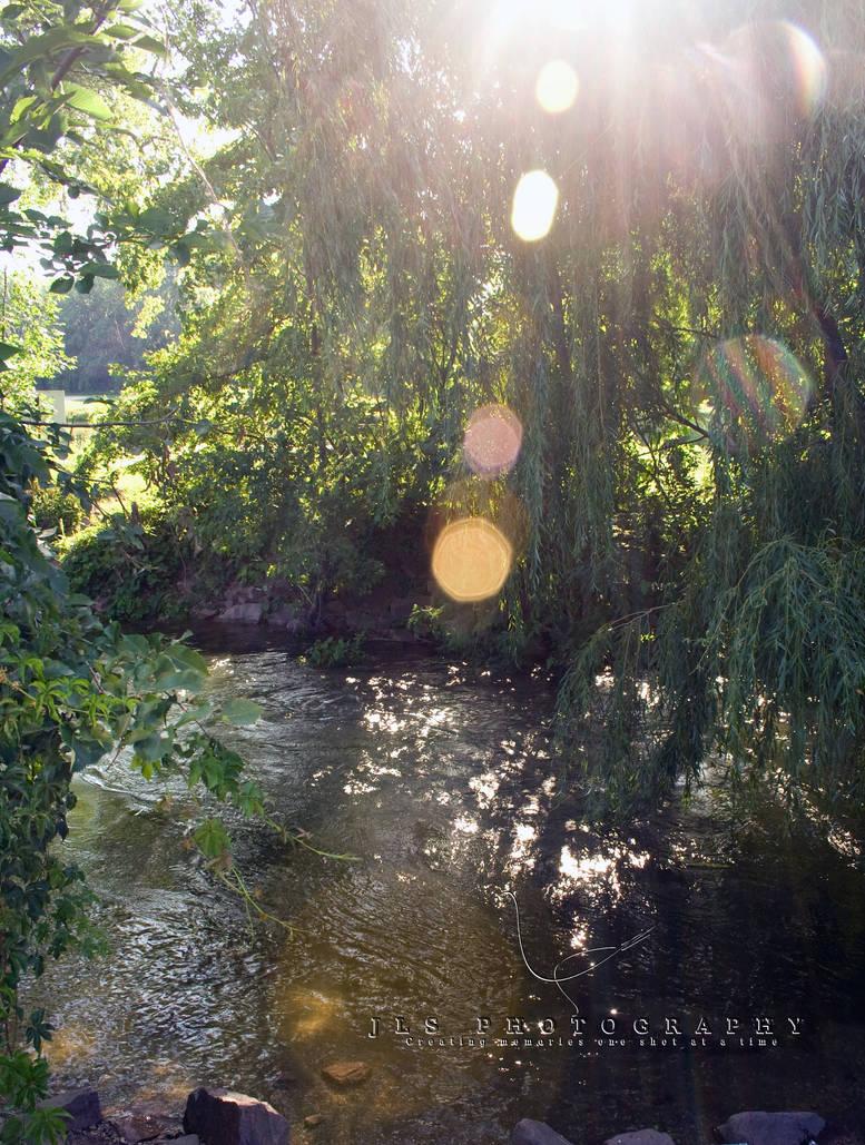 Sunny Waterway