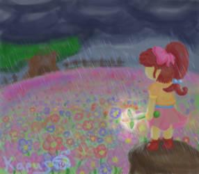 Clouds over Flower Fields
