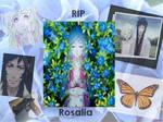 RIP Rosalia- Trauma Team