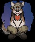 Trippy Hippie Coyote