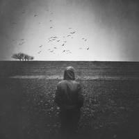 .... by alexsanndra