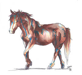 Marker horse experiment by WhyteHawke