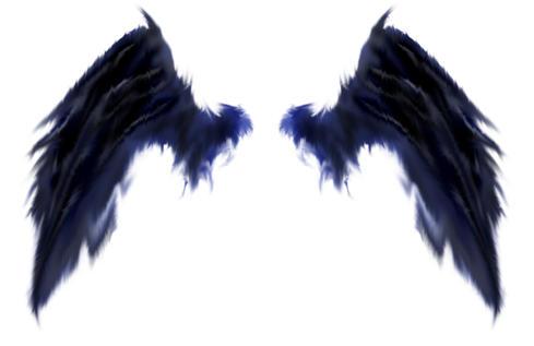 black wings by kittenbaby on deviantart angel wings pictures clipart clipart of angel wings